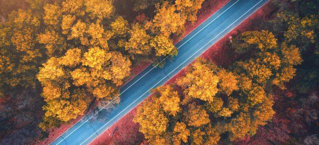 Na čo si dávať pozor pri jazde na jeseň?